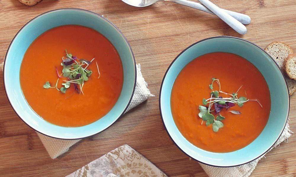 Comida española: los platillos que no puedes dejar de probar