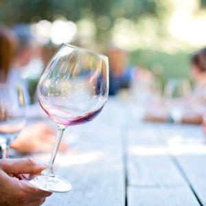 Descubre el Curso Técnico Experto en Enología y Cata de Vinos